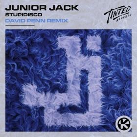 JUNIOR JACK - STUPIDISCO (DAVID PENN REMIX)